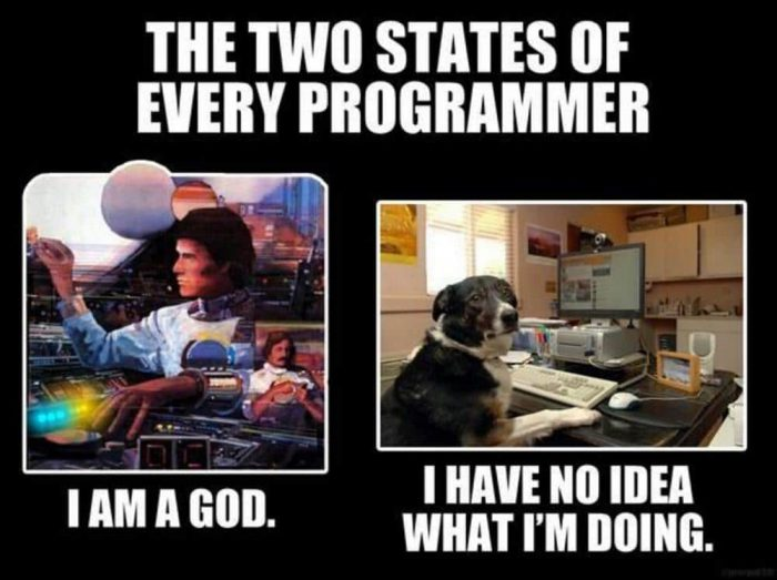 Two states of Every programmer - Meme